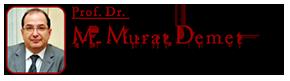 Prof. Dr. M. Murat Demet